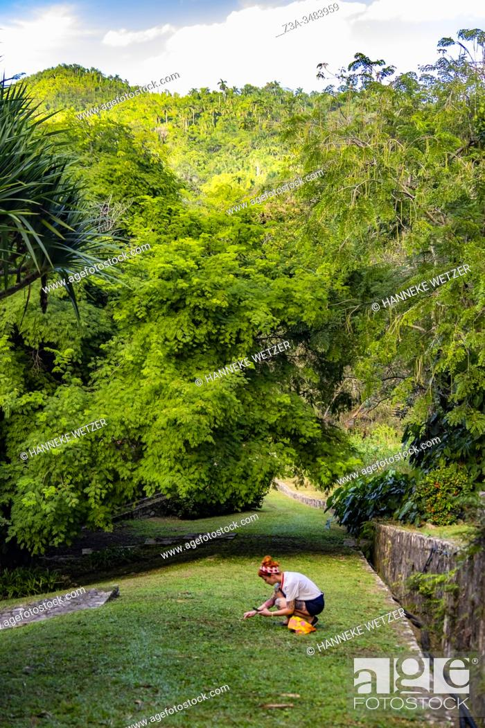 Stock Photo: Girl looking for flowers in the tropical nature of the Republic of Cuba, Caribbean, Central America.