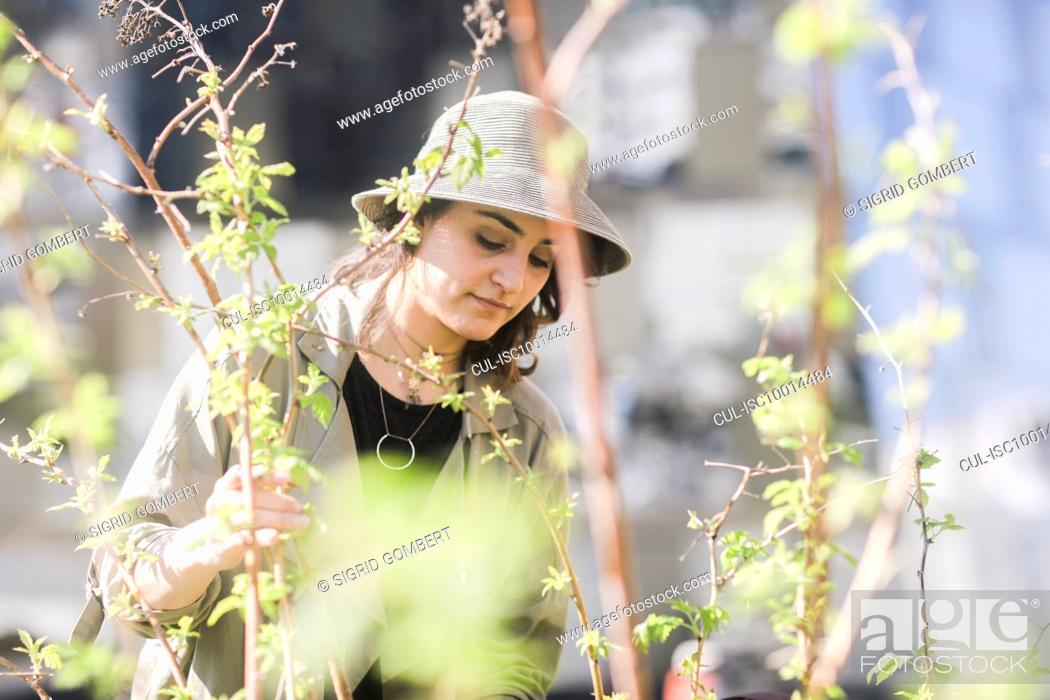 Stock Photo: Portrait of young woman with brown hair wearing hat, tree with young branches in foreground.