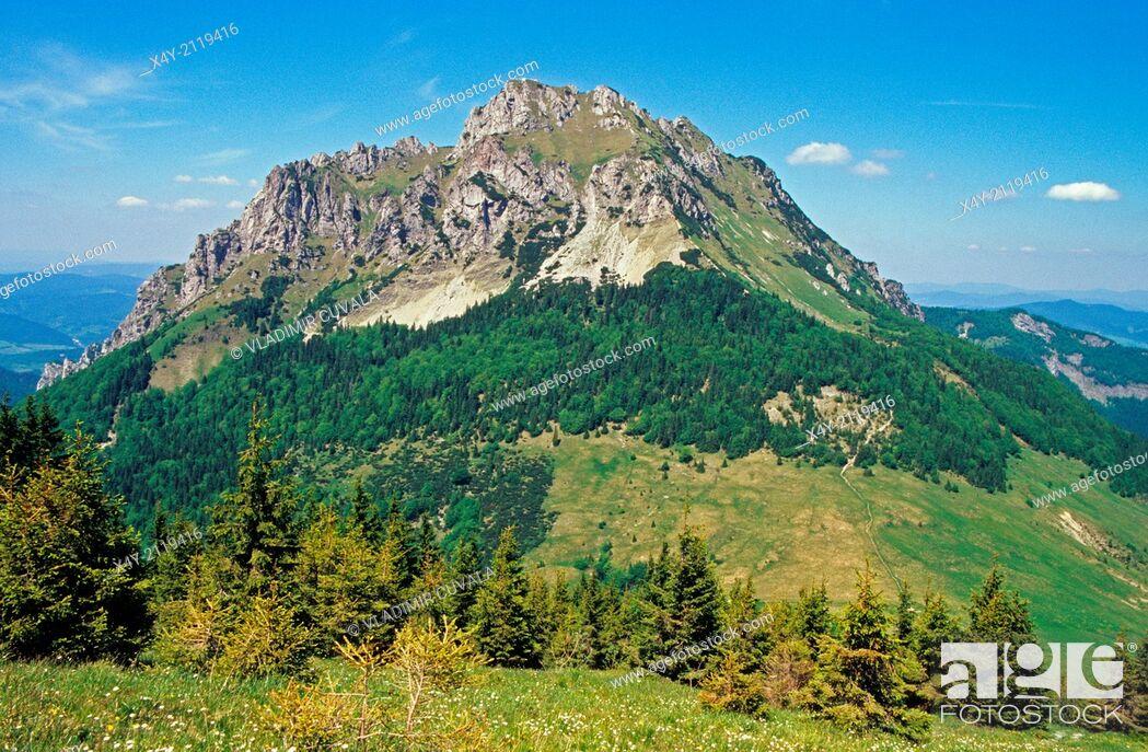 Stock Photo: View of Velky Rozsutec from Stoh, NP Mala Fatra, Slovakia.