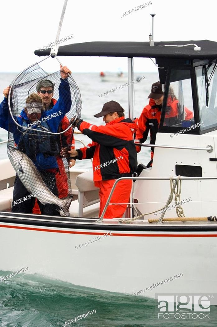 Stock Photo: Sport fishing at Langara Island Lodge, Queen Charlotte Islands, British Columbia, Canada.
