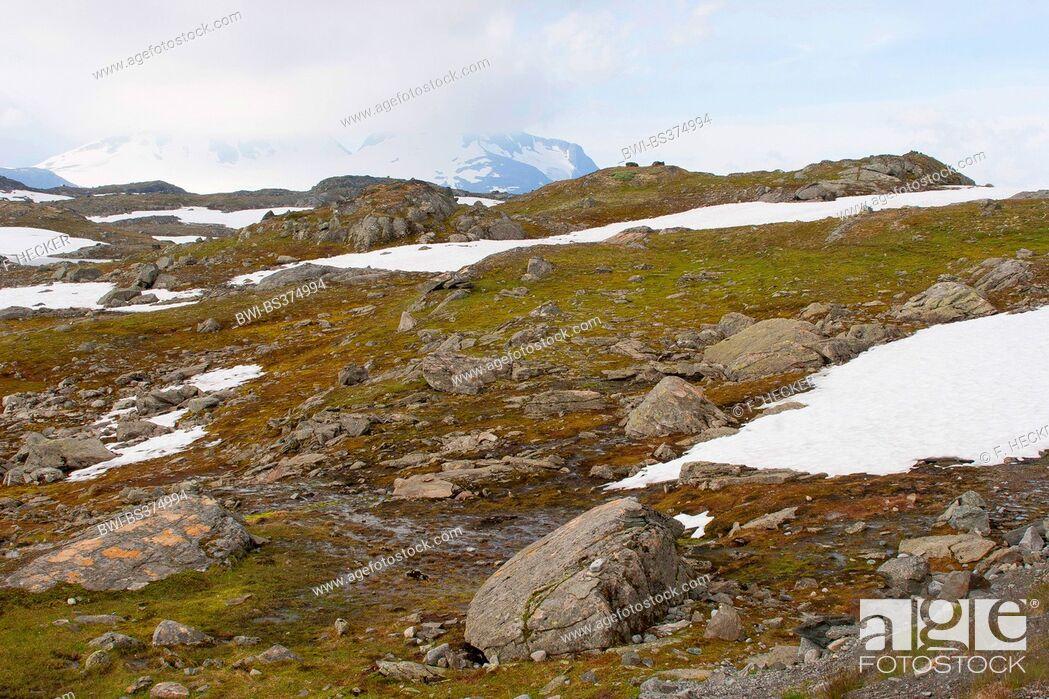 Imagen: landscape at the Jotunheimen National Park, Norway, Jotunheimen National Park.