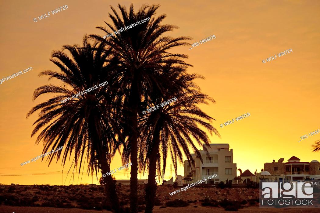 Kostenloses Dating tunisia
