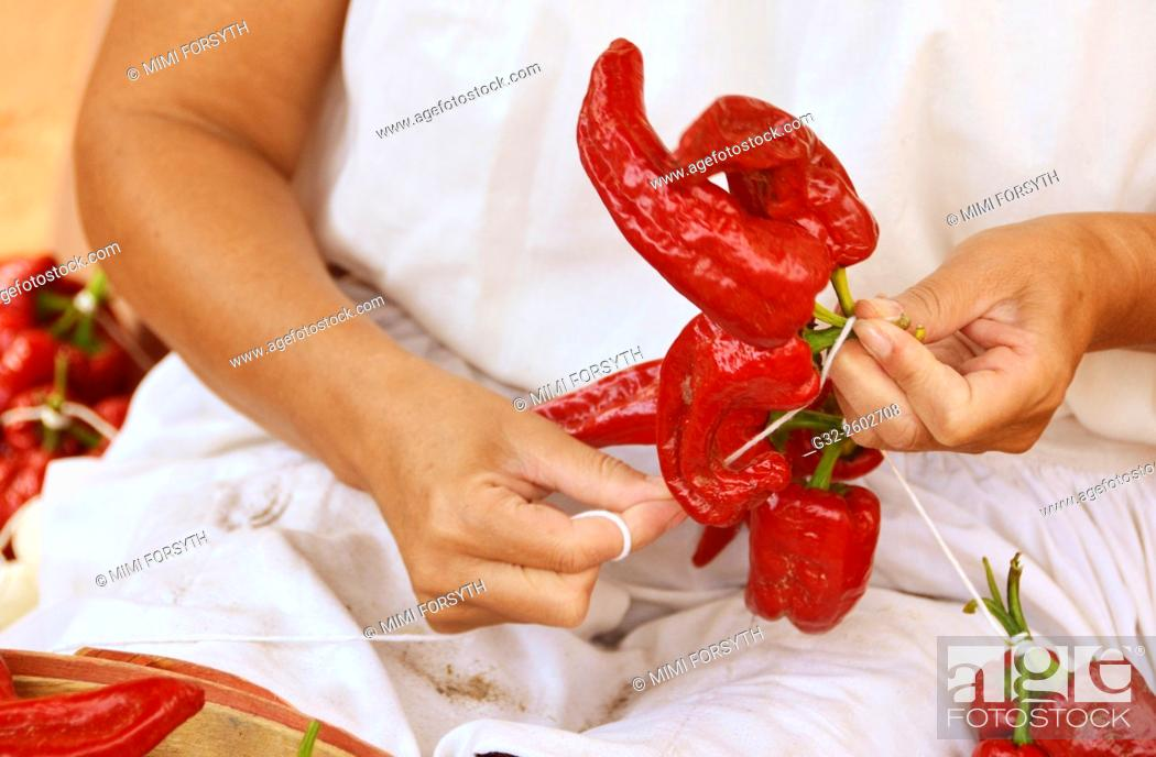 Stock Photo: Woman stringing red chiles to make a 'ristra', La Cienega, New Mexico, USA.