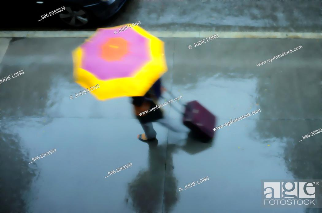 Stock Photo: Woman Holding a Pink and Yellow Umbrella, Wheeling a Carry-on Suitcase, Rushing Down a Rainswept Street, Partial View of a Passing Car on the Top Left.