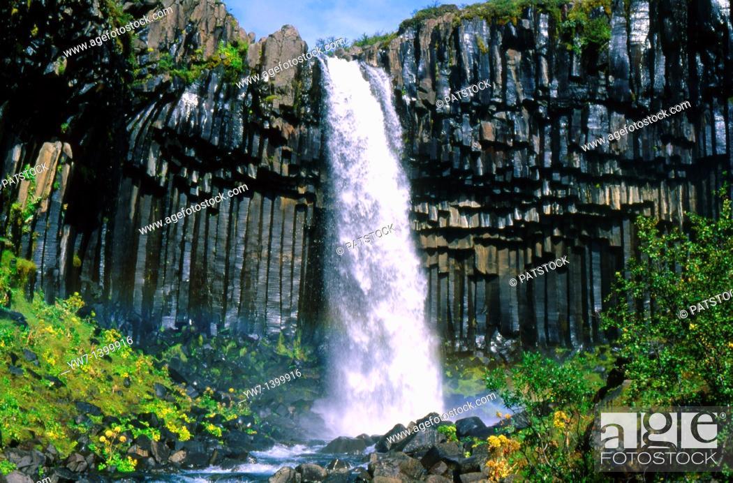 Stock Photo: Svartifoss Waterfall, Iceland.