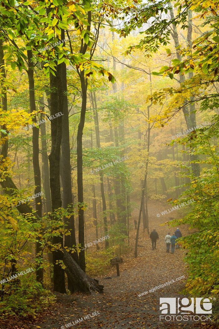 Stock Photo: Franconia Notch State Park, New Hampshire, USA, hikers on Ridge Path near The Flume, October.