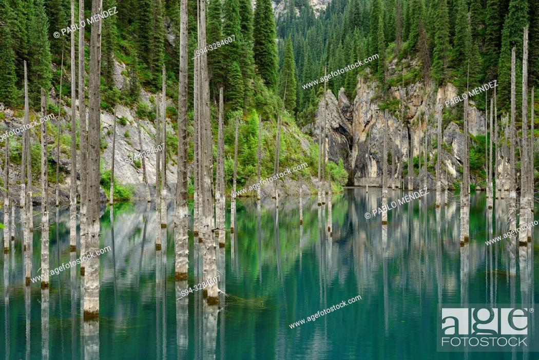 Stock Photo: Kaindy lake, Kungey Alatau, Kazakhstan.
