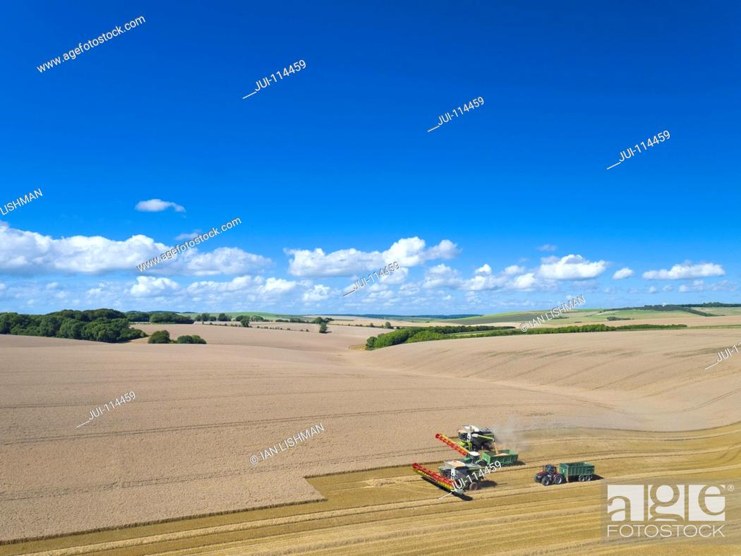 Stock Photo: Aerial View Of Two Combine Harvesters Harvesting Wheat Crop.