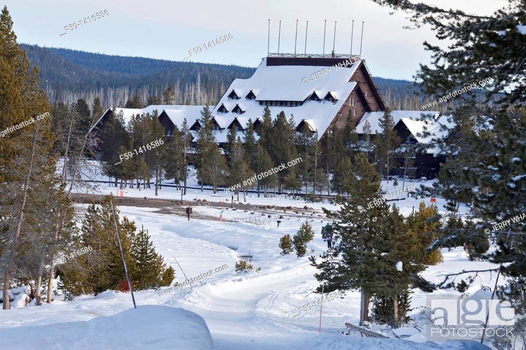 Imagen: Winter, Yellowstone NP, WY.