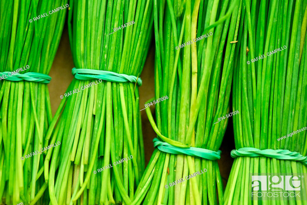 Stock Photo: Chives. Mercado de la Boquería. Barcelona. Spain.