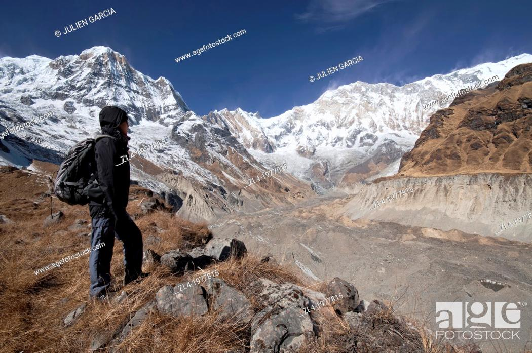 Stock Photo: Trekker watching Annapurna 1, 8091m, from the base camp. Nepal, Gandaki, Annapurna, Annapurna Base Camp. Model Released.