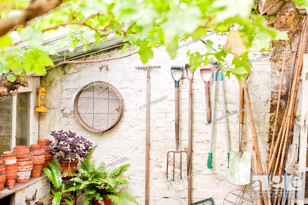 Stock Photo: Tools hanging on wall of garden shed.