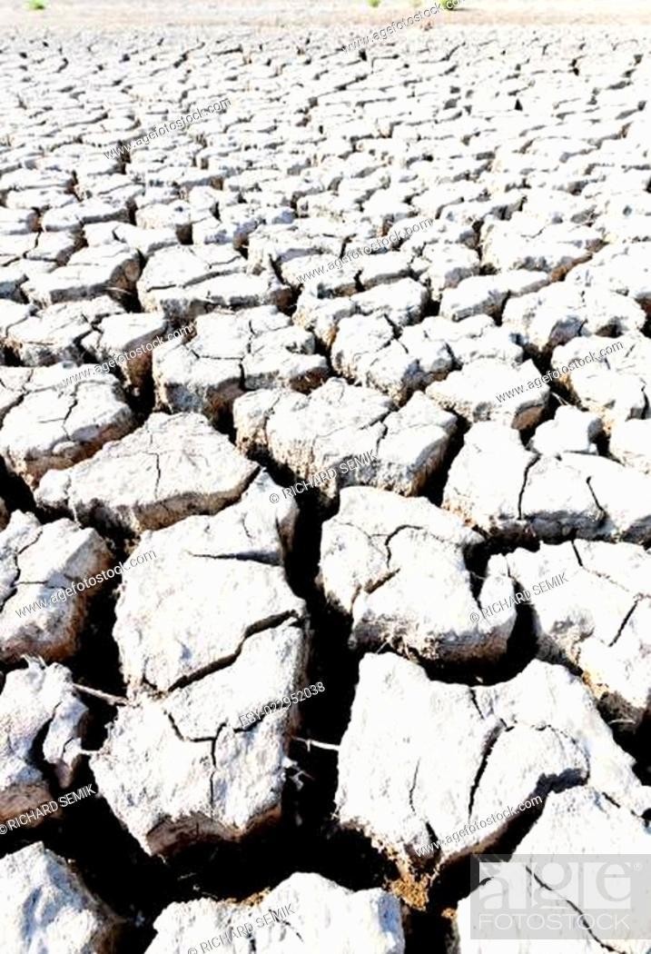 Stock Photo: dry land, Parc Regional de Camargue, Provence, France.