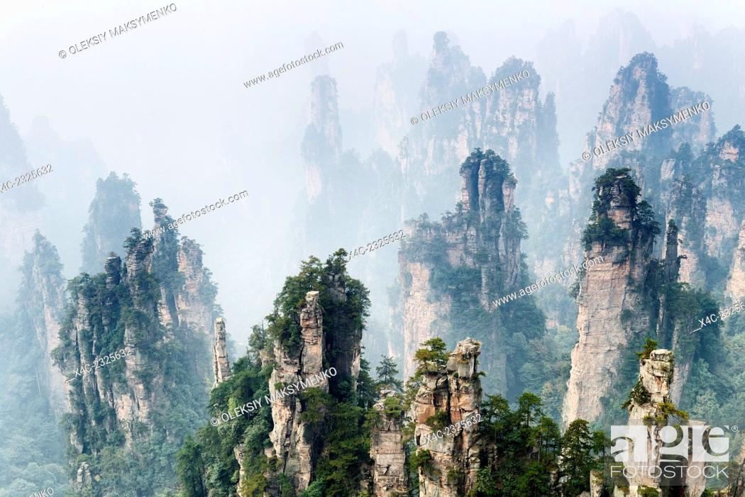 Photo de stock: Mountain spires rising from fog at Zhangjiajie National Forest Park, Zhangjiajie, Hunan, China.