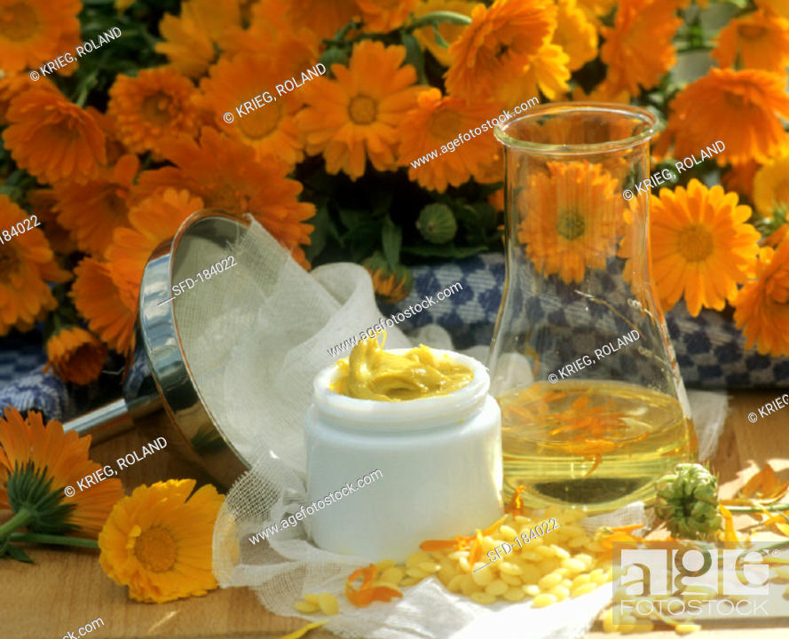 Stock Photo: Home-made marigold ointment in crucible and ingredients.