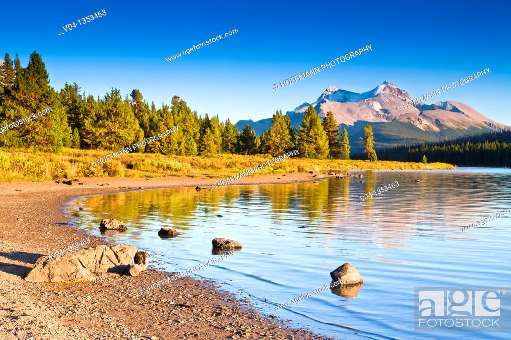 Stock Photo: The shore at Maligne Lake in the Jasper National Park, Alberta, Canada.