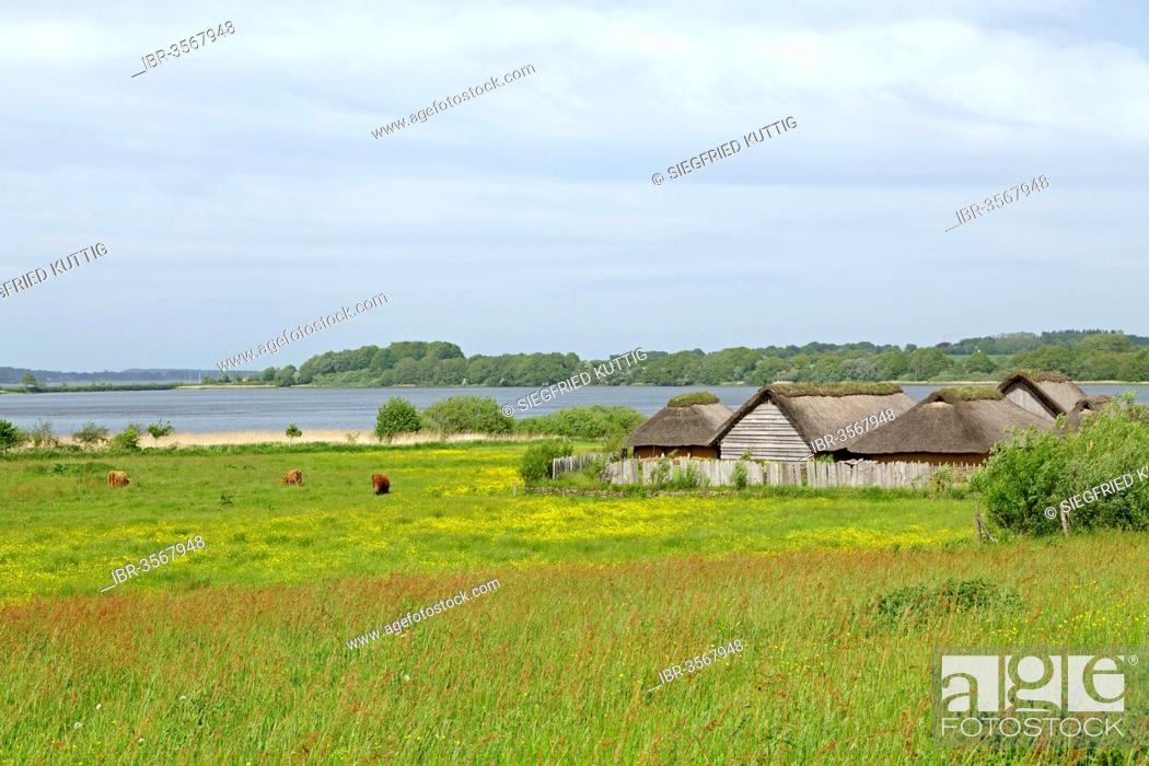Viking houses in Hedeby Viking Museum, Stock Photo, Picture