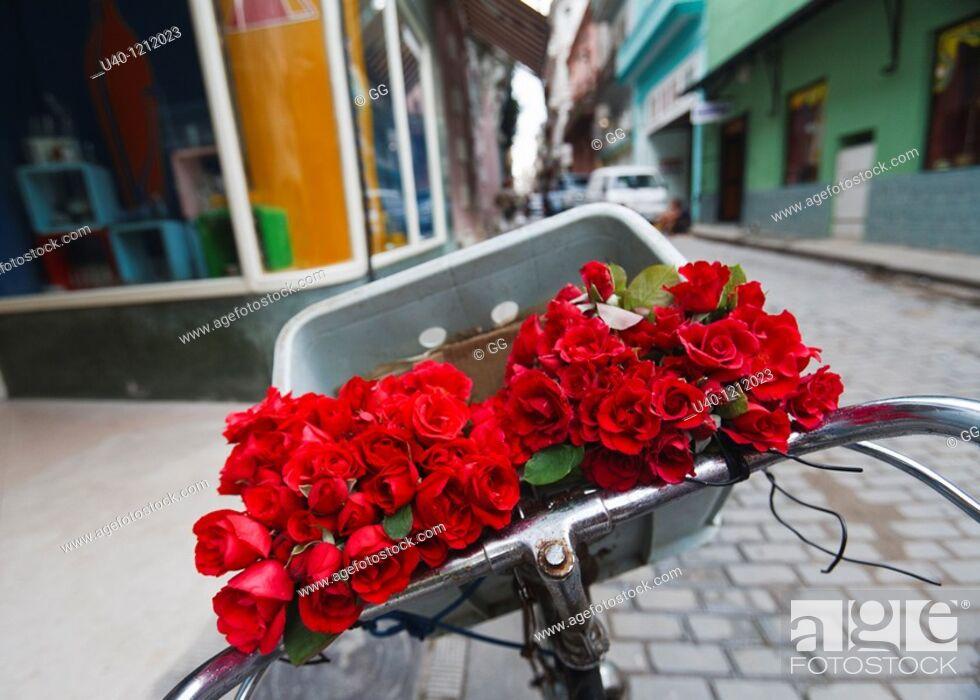 Stock Photo: Cuba, Havana Vieja, flowers in bicycle basket.