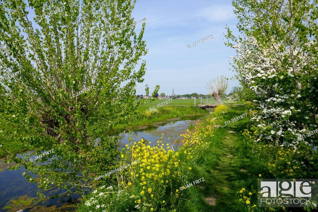 Imagen: small footpath Tiendweg through Groene Hart, Holland.