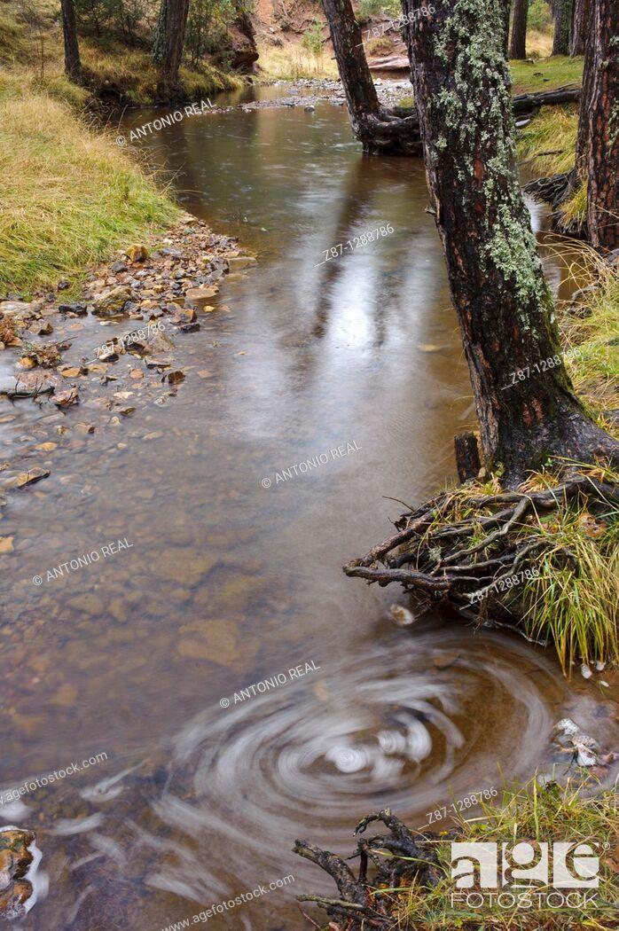 Stock Photo: Hoz Seca river, Orea, Parque Natural del Alto Tajo, Guadalajara province, Spain.
