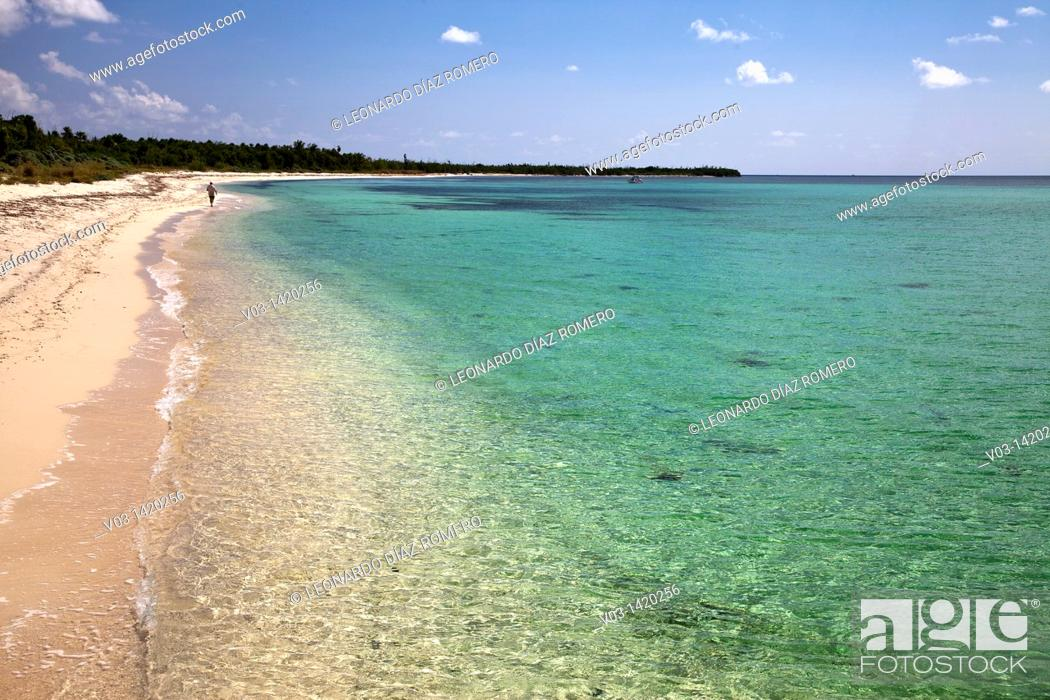 Stock Photo: Sand beach in Cozumel, Mexico.