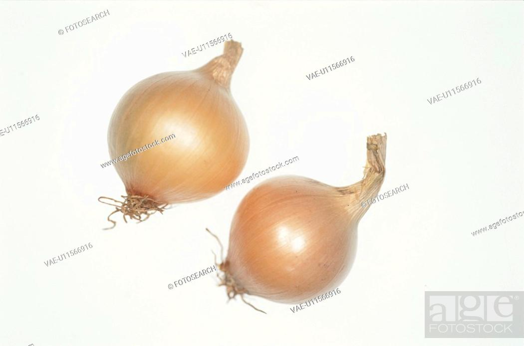 Stock Photo: Pearl Onions.