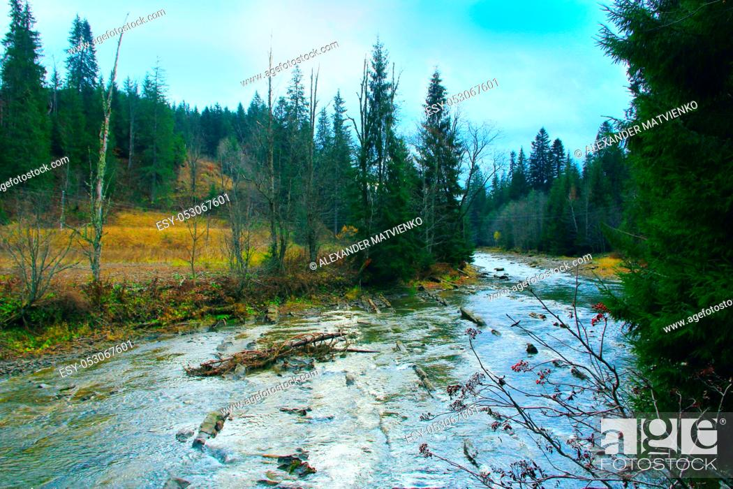 Stock Photo: Mountain river flowing in green forest under mountainous slopes. Beautiful natural landscape. Panorama with forest river.