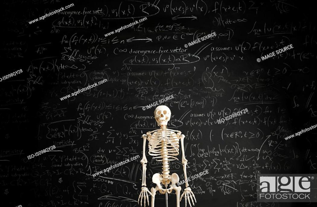 Stock Photo: Skeleton in front of blackboard.