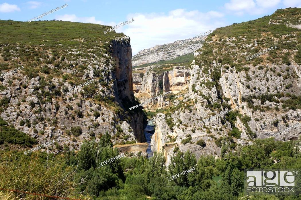 Imagen: Foz de Lumbier canyon, Irati river, Navarre, Spain.