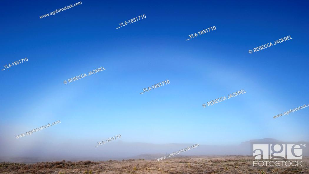 Stock Photo: Fog bow in the Bale Mountains of Ethiopia.