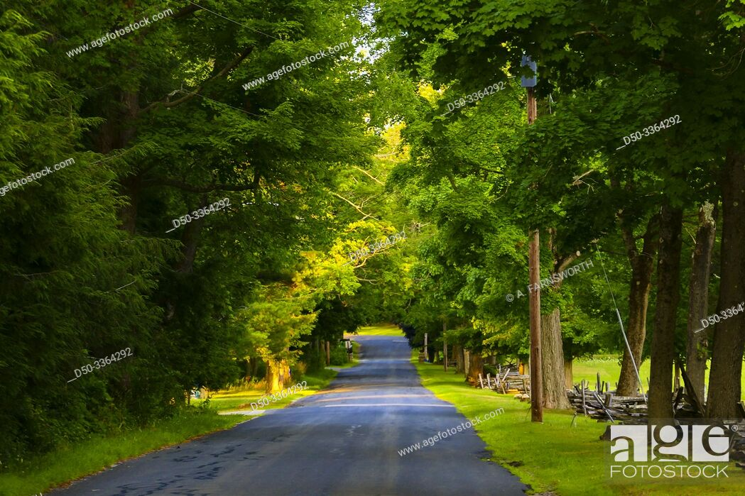 Imagen: Norfolk, Connecticut, USA A country road at sunset.