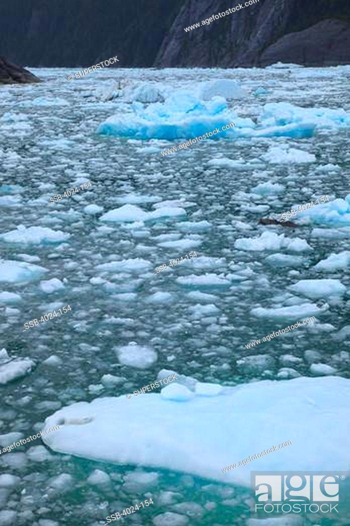 Stock Photo: Glacier melting in the ocean, LeConte Glacier, Inside Passage, Alaska, USA.