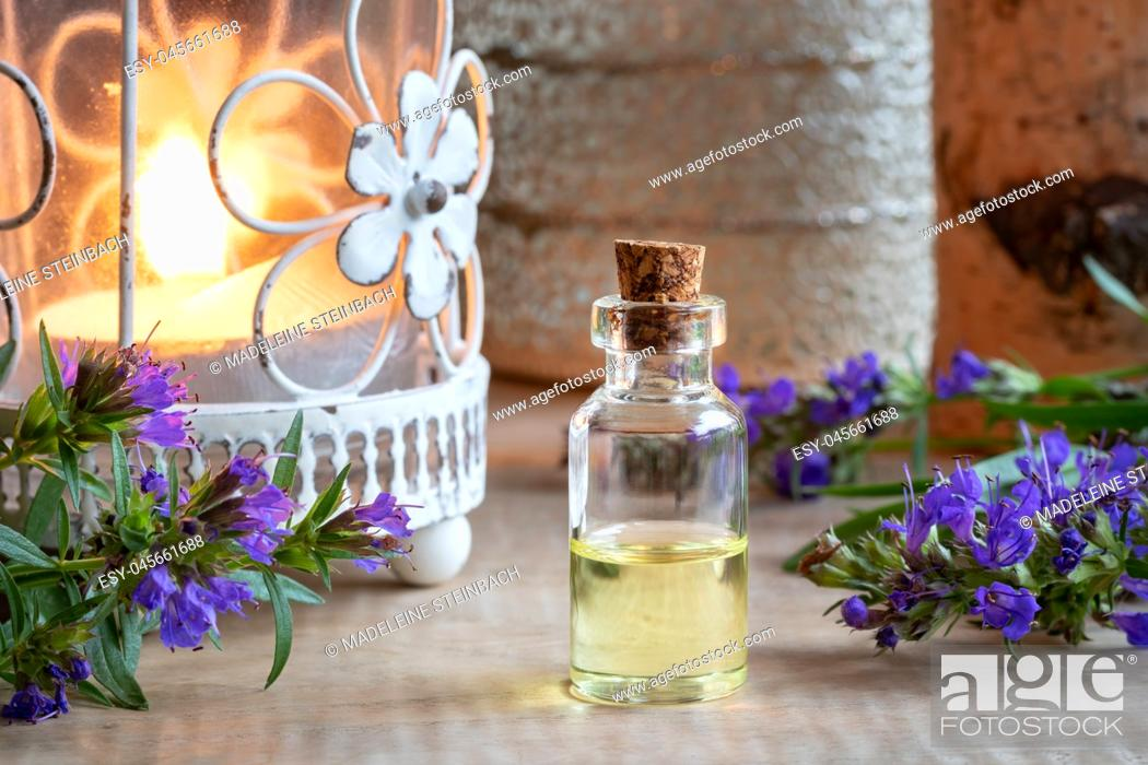 Stock Photo: A bottle of essential oil with fresh blooming hyssop and a candle.