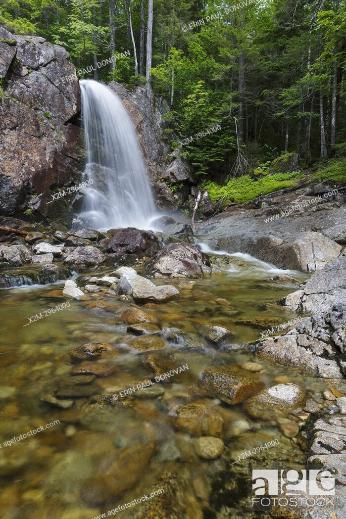 Stock Photo: Thirteen Falls along Franconia Brook in the Pemigewasset Wilderness of Franconia, New Hampshire during the summer months.
