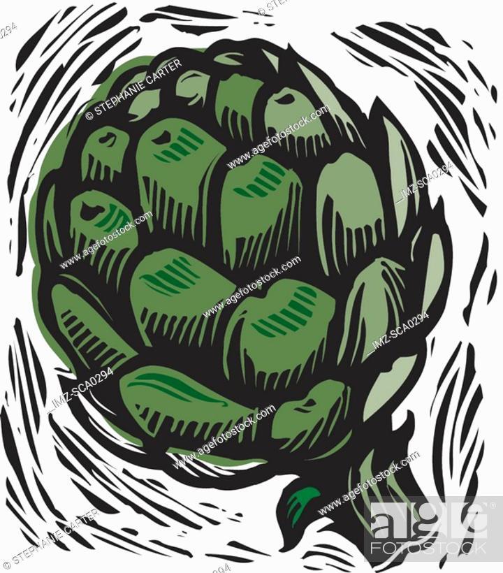 Stock Photo: artichoke heart.