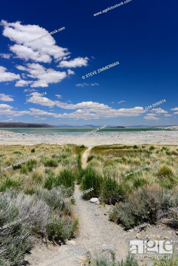 Stock Photo: Mono Lake Approach.