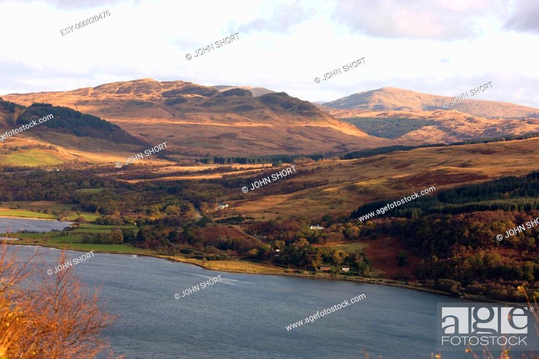 Stock Photo: Hillside, Argyll and Bute, Scotland.