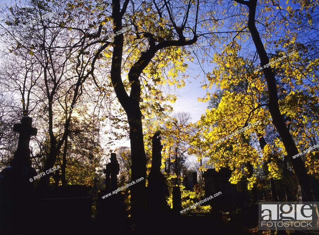 Stock Photo: Poland. Warsaw. Powazki Cemetery. The oldest cemetery in Warsaw.