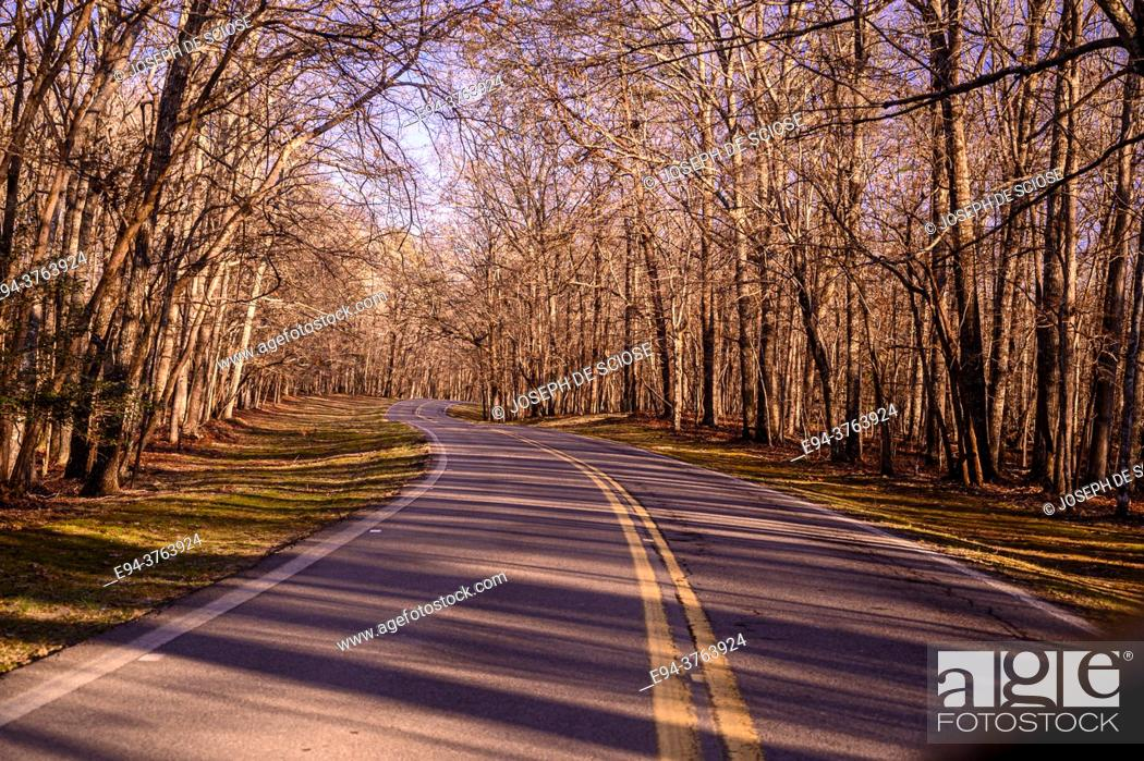 Imagen: A narrow country road in Tennesee, in the winter time.