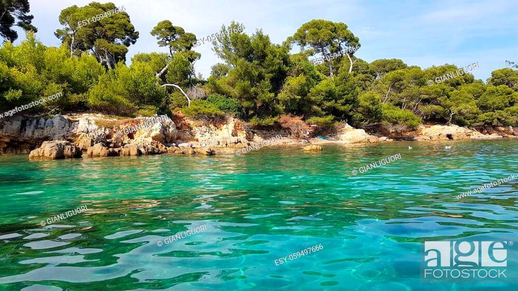 Stock Photo: Sainte Marguerite island, Lerins islands, South of France.