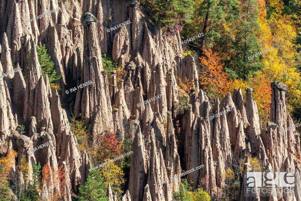 Stock Photo: Detailed picture of the famous earth pyramids near Ritten in South Tyrol on a sunny autumn day with multi coloured foliage in the background.