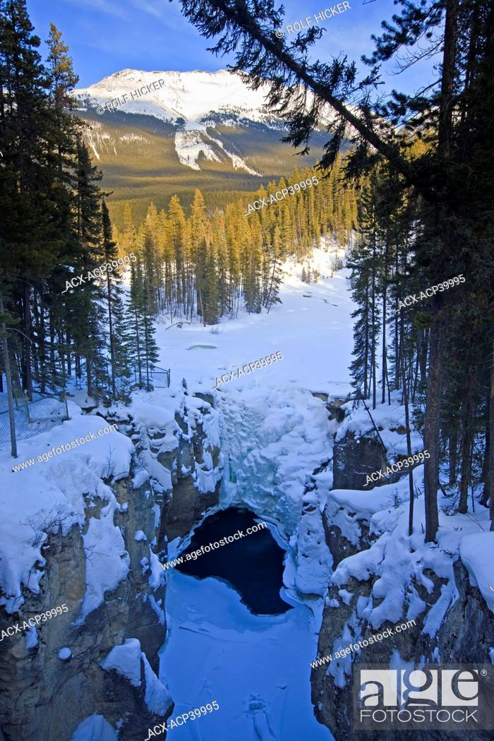 Stock Photo: Snow and ice covered Sunwapta Falls along the Sunwapta River, Icefields Parkway, Jasper National Park, Canadian Rocky Mountains, Canadian Rocky Mountains.