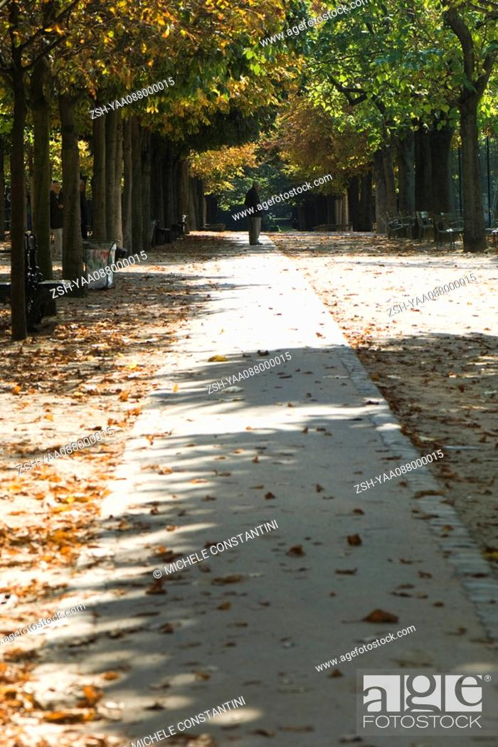 Stock Photo: France, Paris, leaves scattered across path in park.