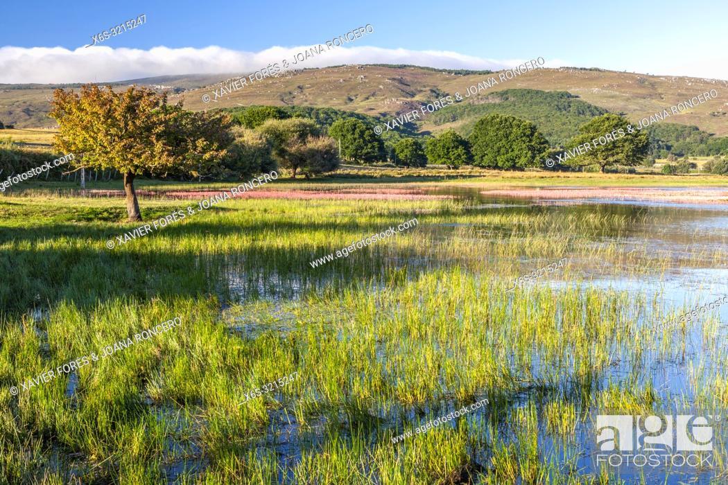 Stock Photo: Ebro Reservoir near La Población village, Cantabria, Spain.
