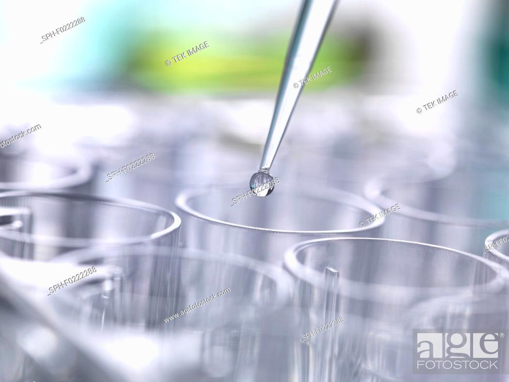 Stock Photo: Genetic research.
