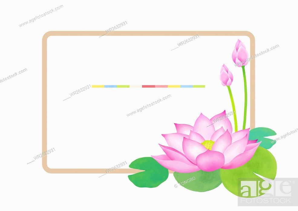 Imagen: Frame with lotus flowers.