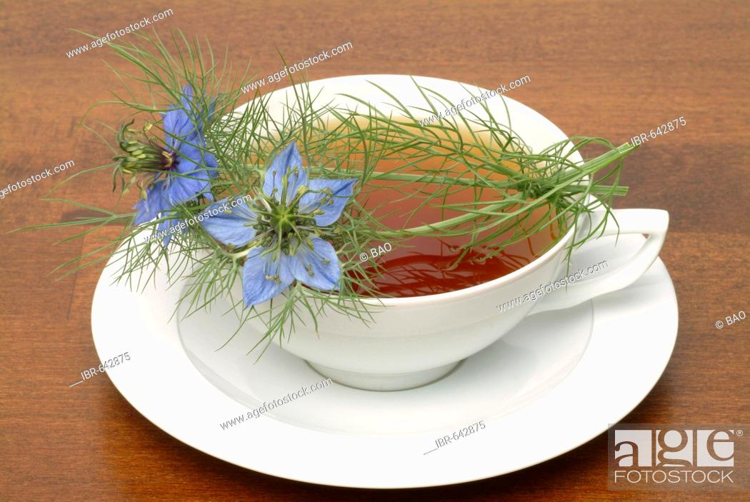 Fennel Flower or Black Caraway (Nigella sativa) herbal tea