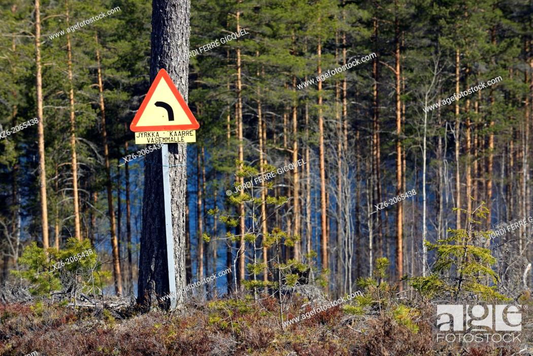 Stock Photo: Road sign in a wood, North Karelia, Finland, Europe.