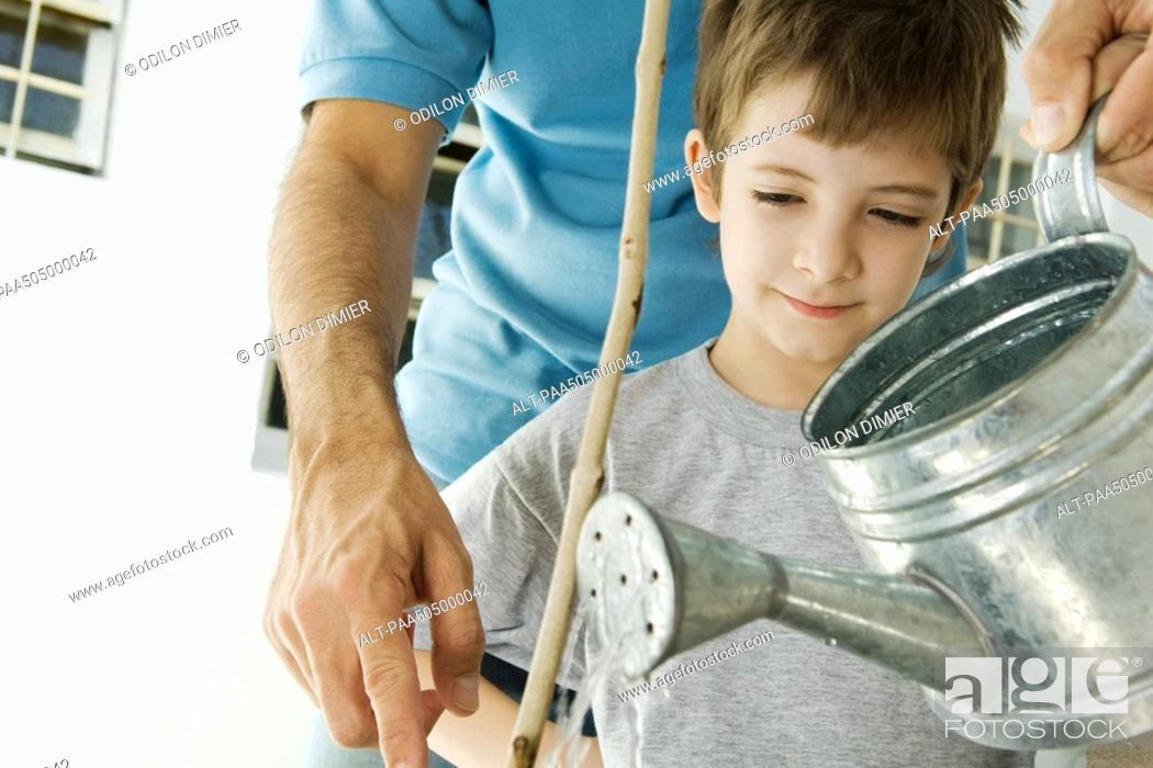 Stock Photo: Father and son watering plant together, cropped view.