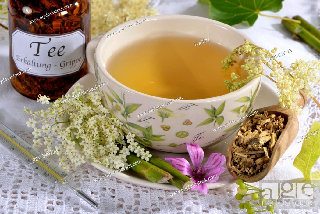 Stock Photo: Colds and Influenza tea, Lime Tree blossom, Elderflower, Elderberry, Mallow leaf, Mallow, Common Mallow, Liquorice root, European elderberry, Elder.
